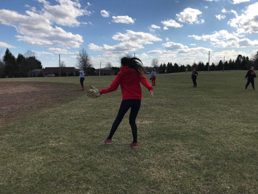 Softball Starts