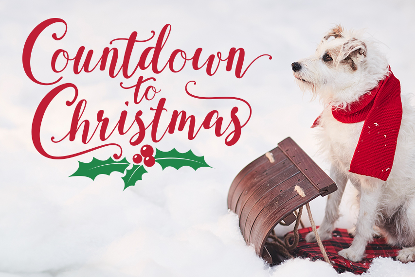 3 Reasons to Watch Hallmark Channel's Count Down to Christmas